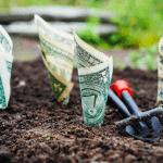 Improving Profitabilitiy